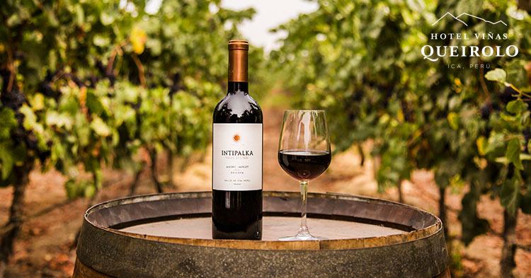 Tour vitivinícola
